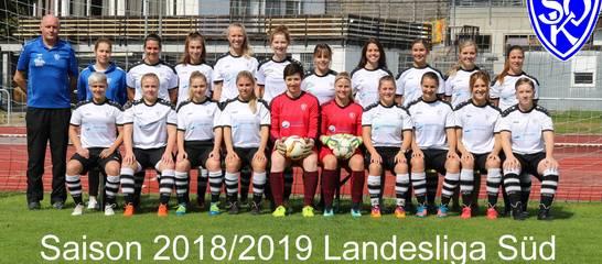 Die Landesliga-Mannschaft der Frauen in der Saison 18/19; Foto: T. Weißenbach